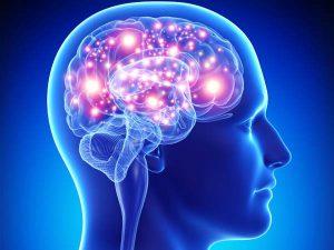 Află de ce este nevoie de DHA pentru creier